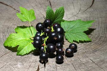Beeren der schwarzen Johannisbeeren №33168