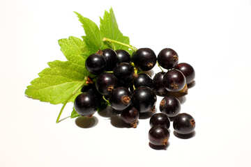 Berries of black currant isolated