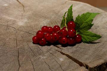 Ein paar Rote Johannisbeere Beeren mit Blättern №33219