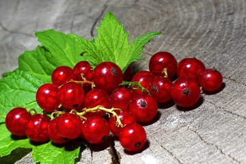 Fresh red currants №33234