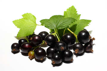 Ripe black currant isolated №33163