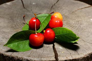 Berry Cherry  №33201