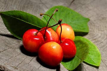 Sweet cherry №33204