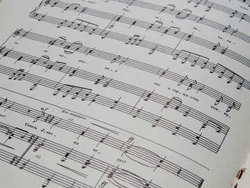 Libro di musica №33029