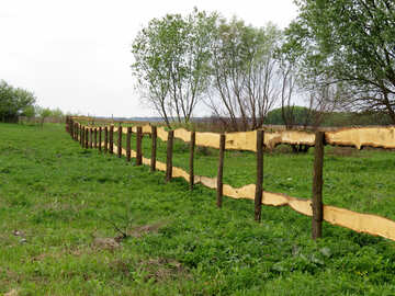 Paddock for horses №33290