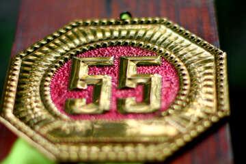 Medal 55 №33495