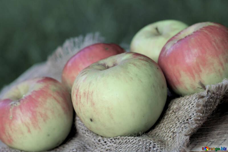 Manzanas №33570