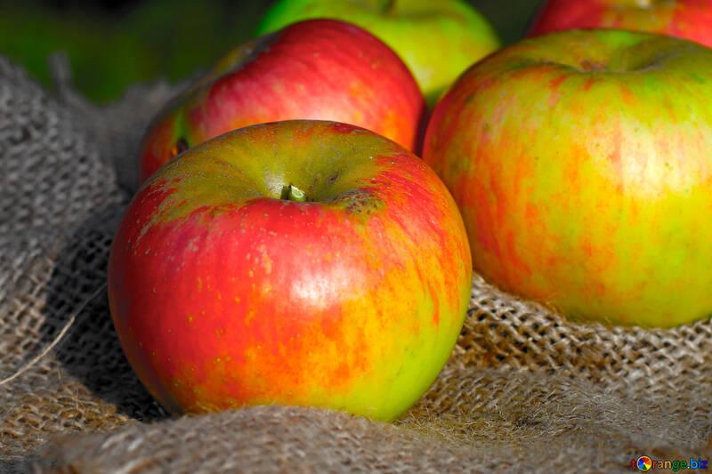 Deliciosas manzanas №33563