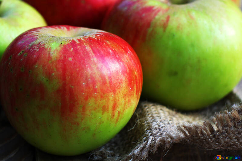 Pommes rouges №33574