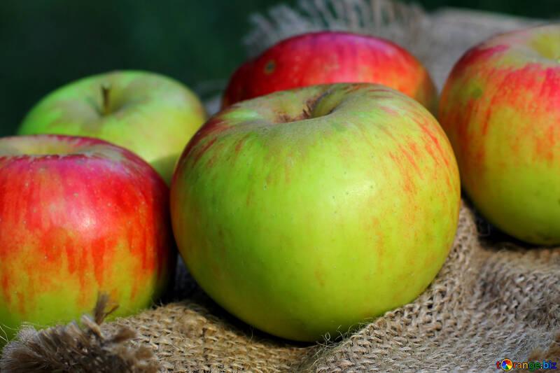 Manzanas ucranianas №33567