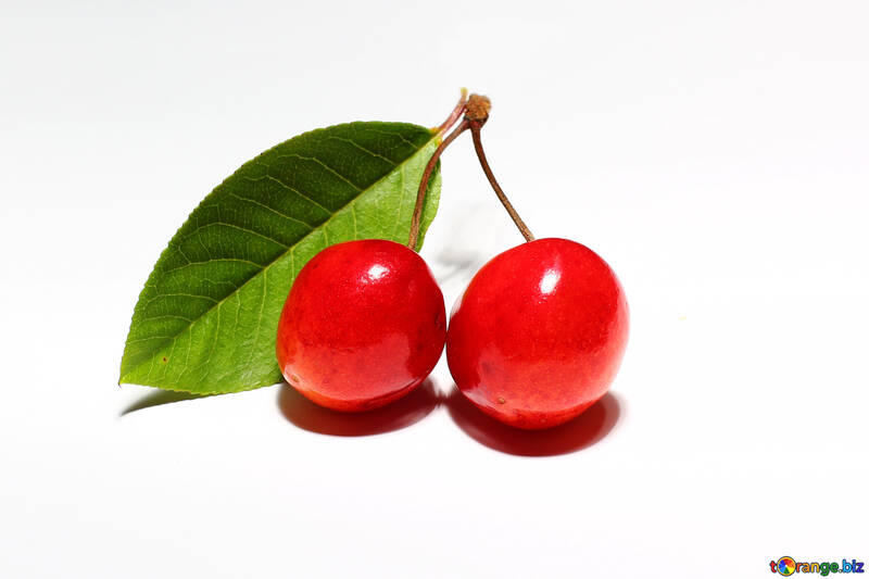 Cherry with leaf isolated №33192