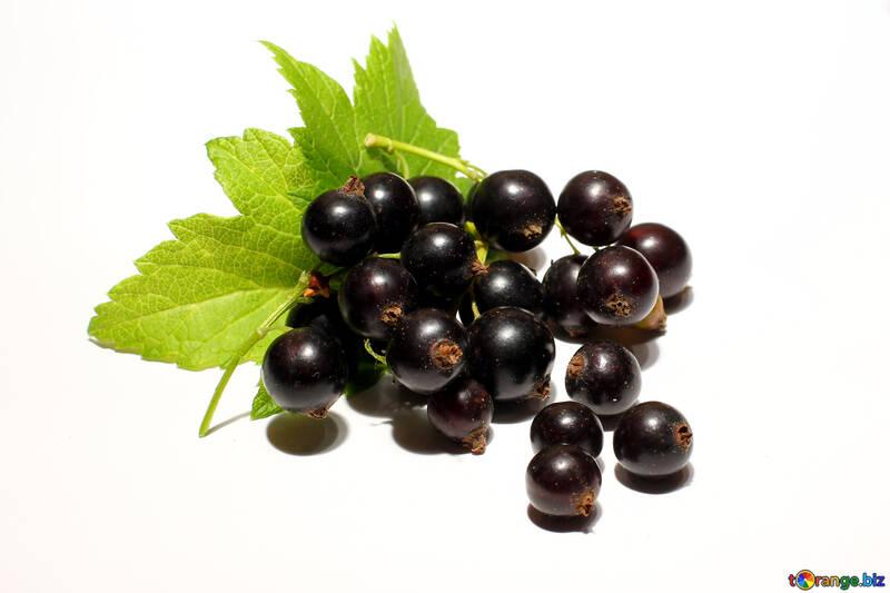 Beeren der schwarzen Johannisbeeren isoliert №33157