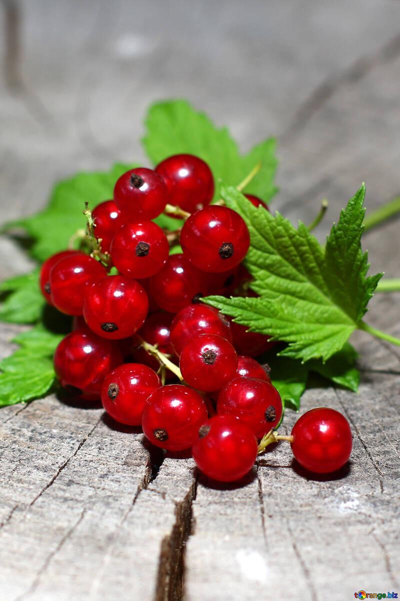 Rote Johannisbeeren auf dem Tisch №33241