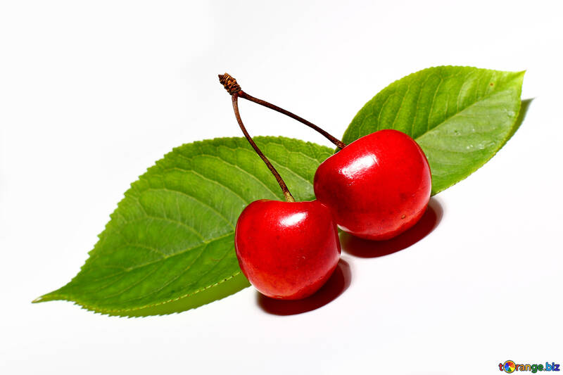 Cherry isolated with leaf on white background №33196