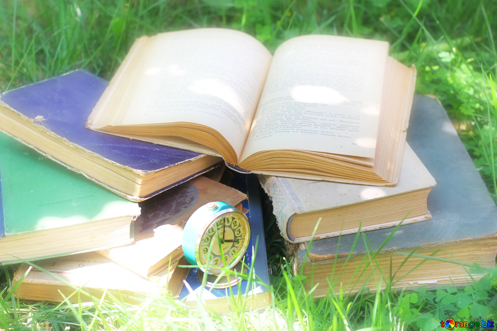 Books On The Grass The Book Of Life Watch 34868
