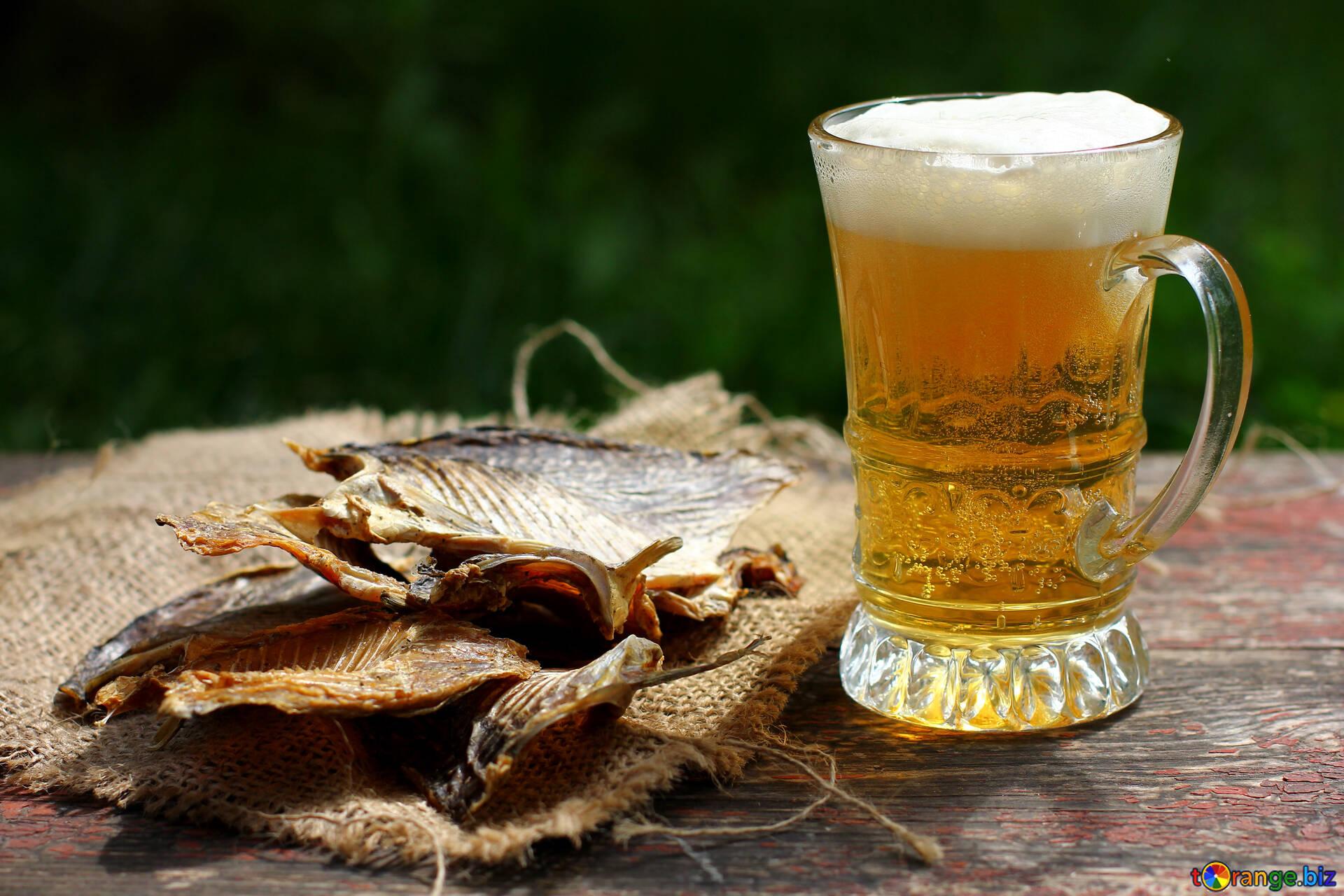 fish dried beer 34485 - Сколько там до той пятницы-то?!