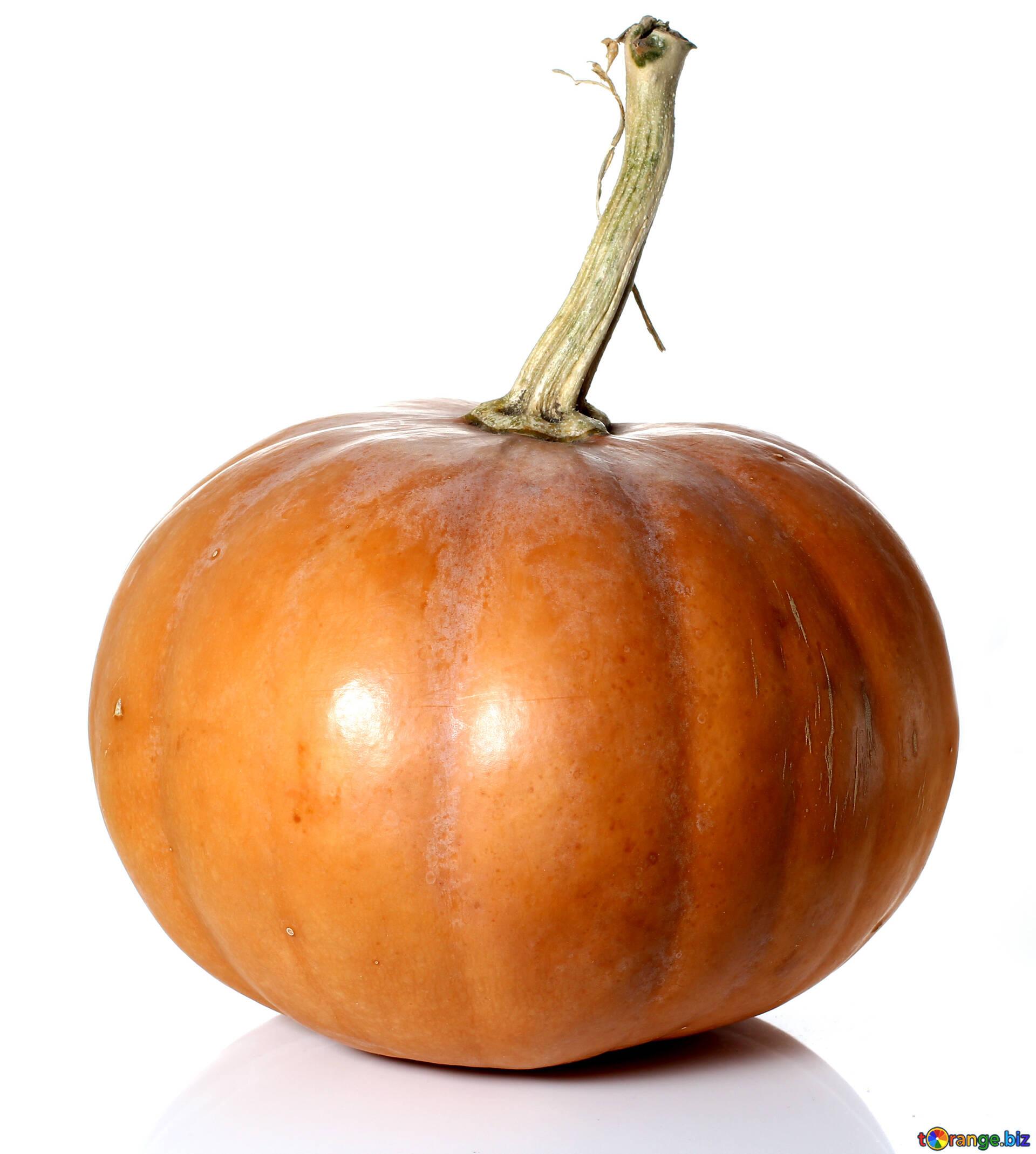 Pumpkin Isolated On White Background Orange Pumpkin In
