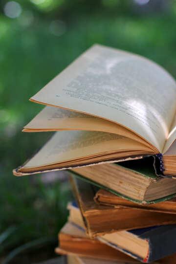 Book knowledge base №34899