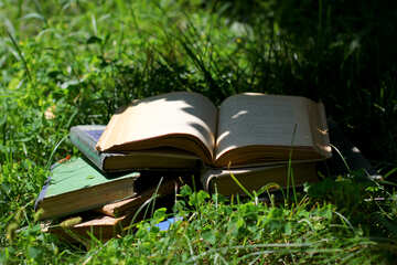 Books №34877