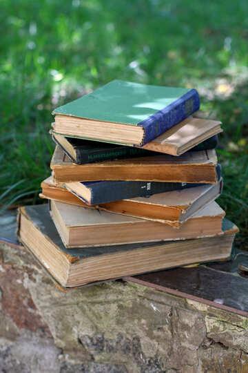 Abandoned books №34915