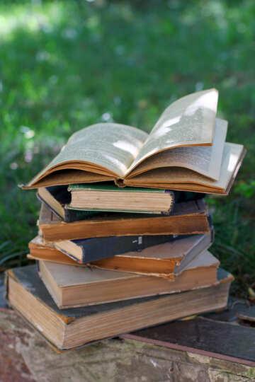 Many books №34913