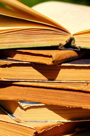 Reading books №34938