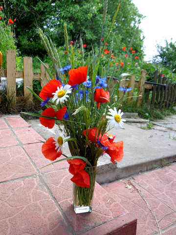Blumenstrauß Feld №34286