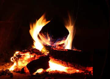 Wood Burns №34430