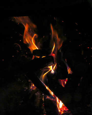 Beautifully lit fire in the fireplace №34344