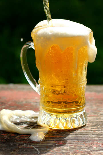 Bier №34466