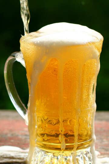 Lebende Bier №34465