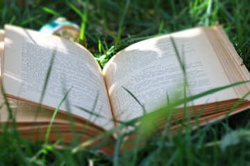 Book in the grass №34857