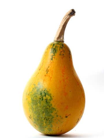 Pumpkin pear shaped stand-alone №34980