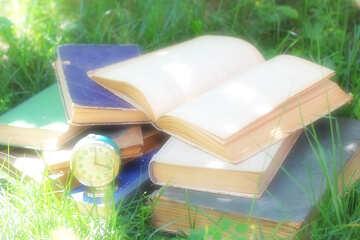 Увлекательная книга №34865