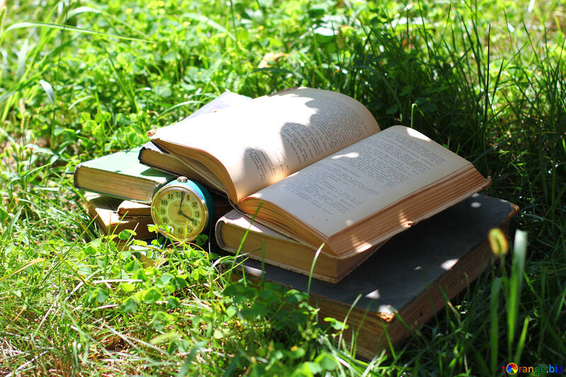 Reading books wallpapers №34872