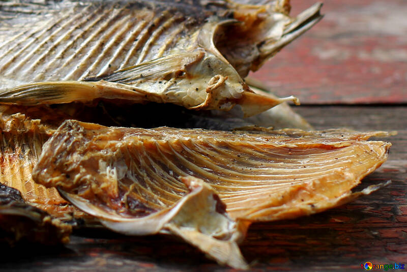 Barbatana de peixe №34509