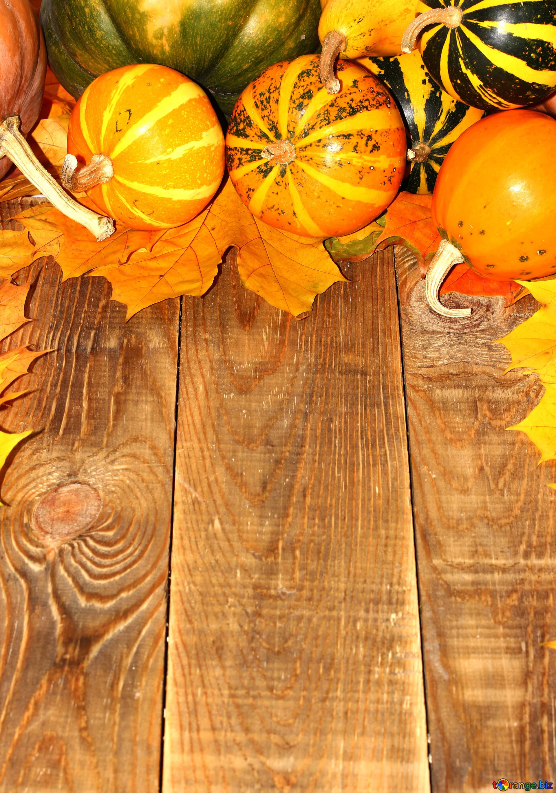 Herbst Hintergrund Mit Kurbissen Und Blattern Herbst Hintergrund Mit
