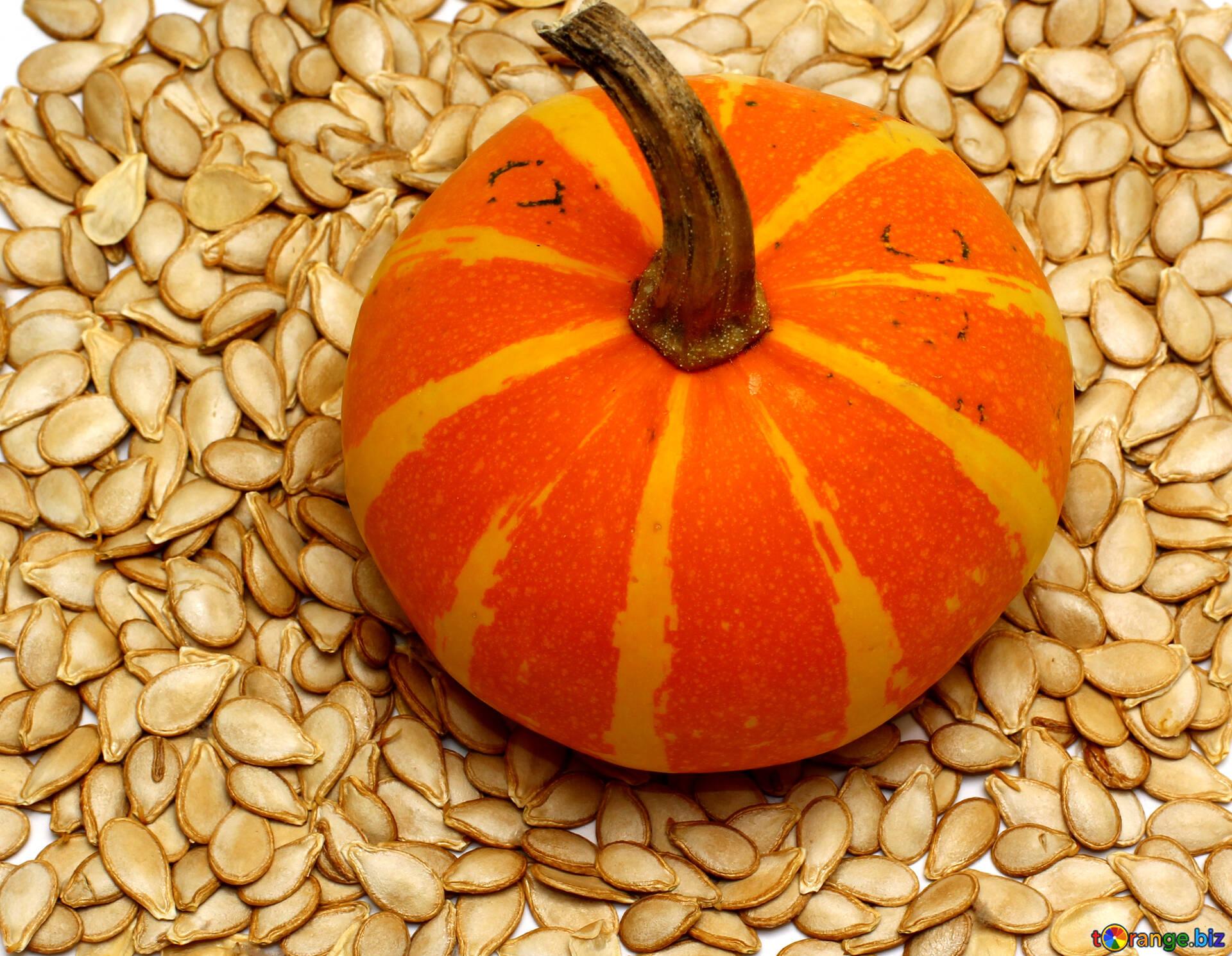 Картинка тыквы с семенами без