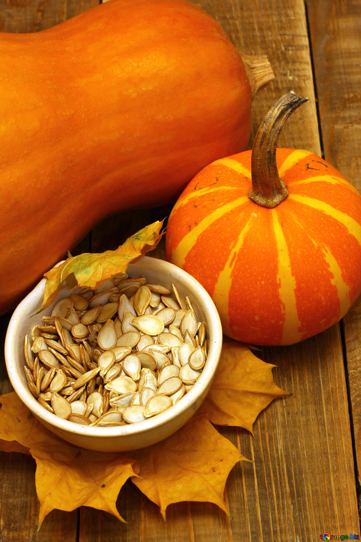 Why is a pumpkin useful? 85