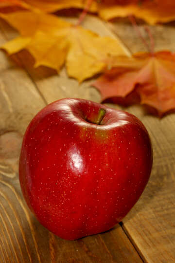 Apple №35197