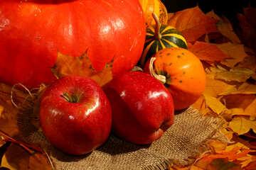Pumpkin and apple №35340