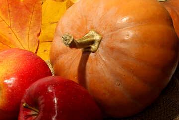 Pumpkin and apples №35157