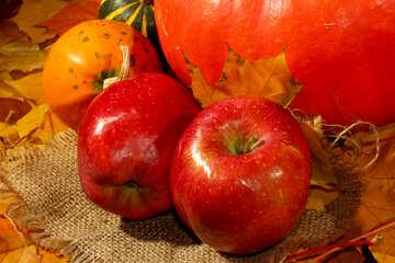 Apples and pumpkin №35339