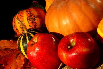 Яблоки и тыквы осенью №35328