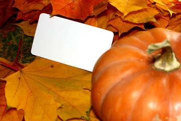 Autumn background card with pumpkin №35181