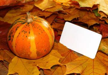 Einladung Herbst mit Kürbis und Herbstlaub №35186