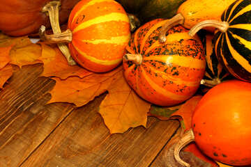 Autumn background with pumpkins №35221