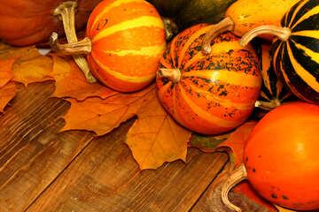 Herbst Hintergrund mit Kürbissen №35221
