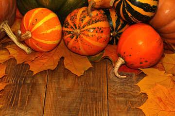 Herbst Hintergrund mit Kürbissen №35225