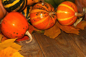 Autumn background with pumpkins №35226